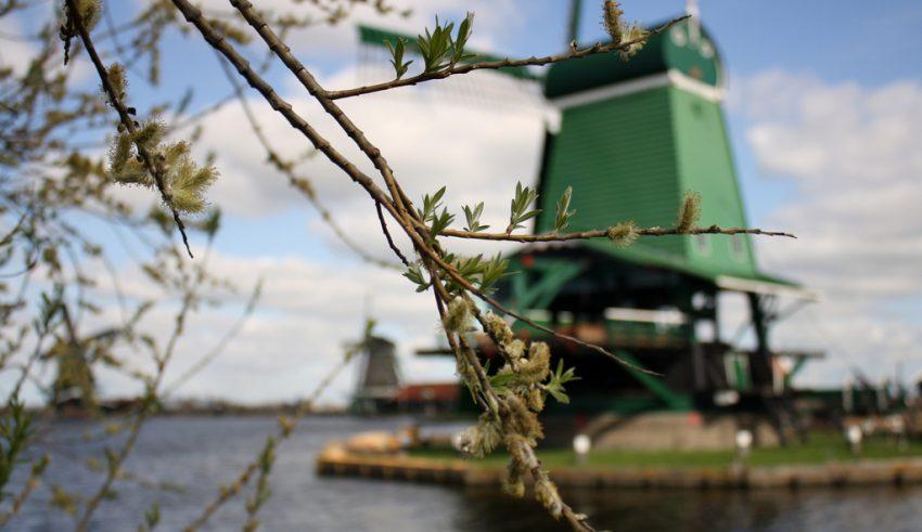 Погода в Нидерландах (Голландии) в апреле